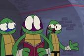 Cười lăn lộn với clip hài: Một ngày free của Ninja rùa